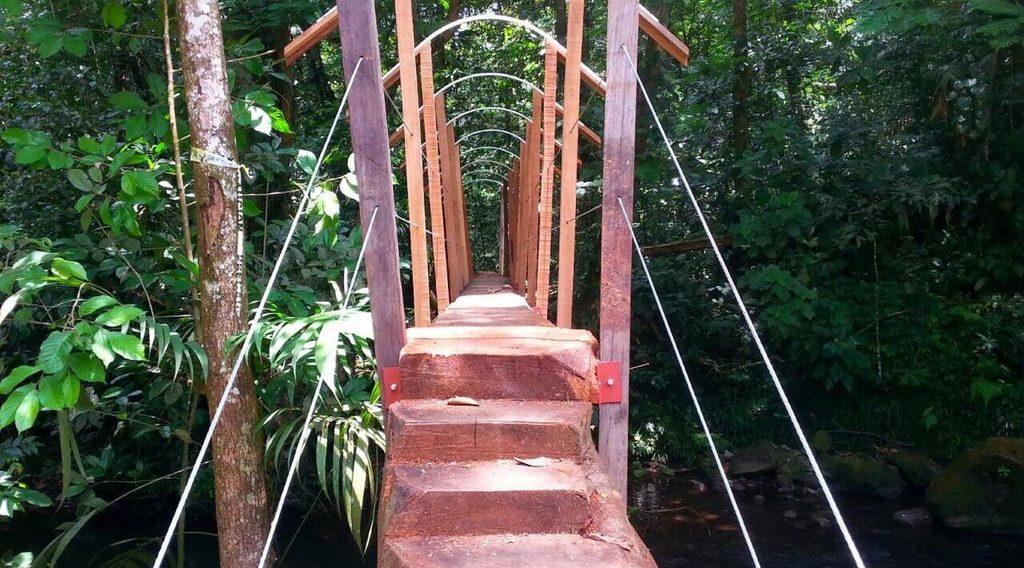 Hotel del Bosque Rainforest | Best Costa Rica Eco Lodge Hotel