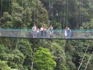 tours near sarapiqui costa rica 1