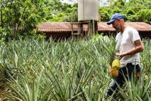 Alquiler de Quintas en Costa Rica 18